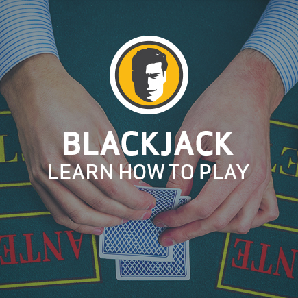 The Ultimate Guide to Learning Blackjack.