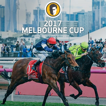 learn more about the Melbourne Cup Form Guide at Joe Fortune Casino